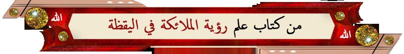 hani zr si rwaya-al-malaika