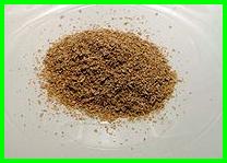 hanibalharbmag-50.15(2)